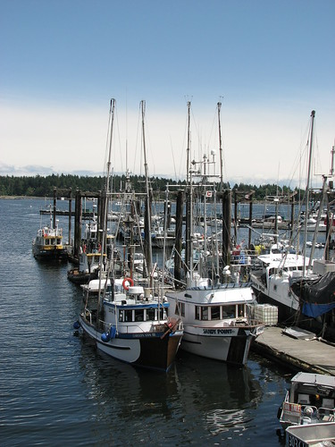Harbour, Nanaimo, British Columbia by Calzephyr