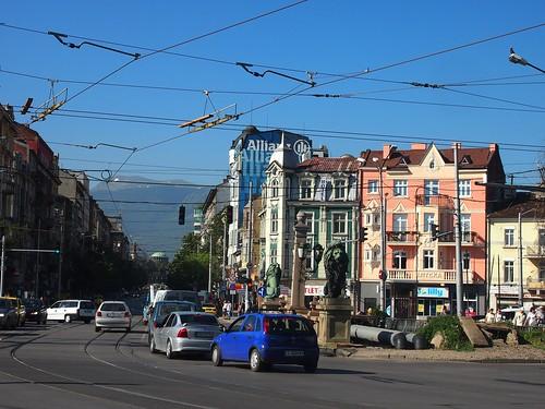 Sofia-7