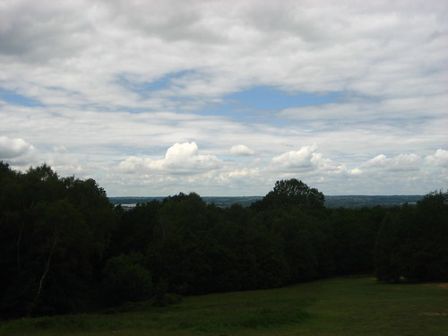 View from the Epping Forest Field Centre