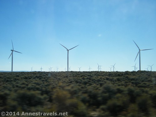 A wind farm we ran across...there's a lot of open space in Wyoming!
