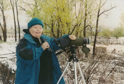 Suzi ~ Winter Birding