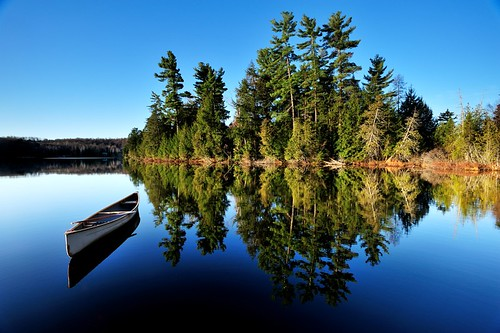 Canoe & Pines, Basshaunt Lake