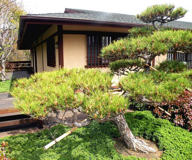 Tatami - Rock Garden House