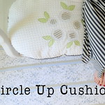 Feather Your Nest Entry: Circle Up Cushion