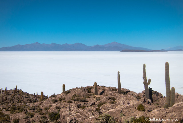 View from atop Isla Incahuasi