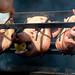 Three little piggies went to market... by -Tripp-