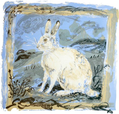 mark_hearld_mountain_hare_lithograph