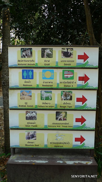 Chiang Mai Zoo in Thailand