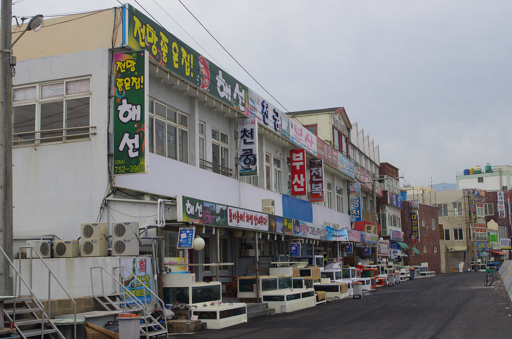 topdong