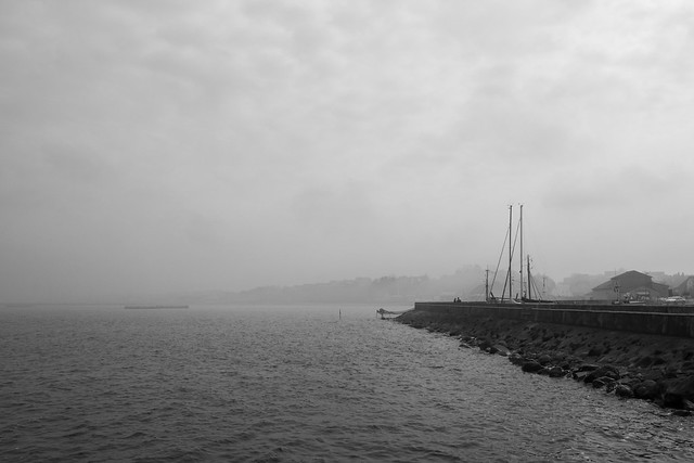 7259377198 2170fe3f7f z a foggy harbor