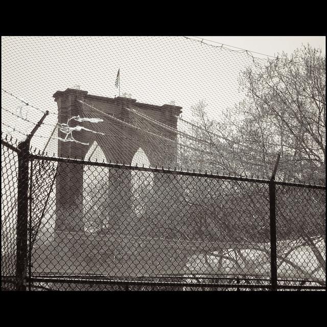 bridges and fences