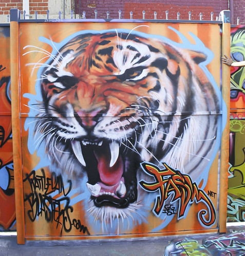 Tiger by Fasm in LA, CA