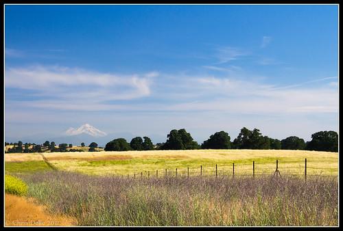 california mountain canon landscape unitedstates 7d mountshasta fenceline