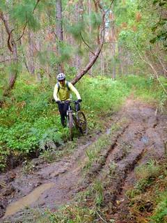 Dodging Mud