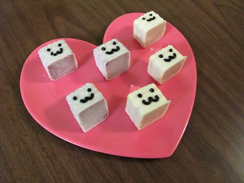 Tofu Baby 1251