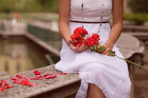 """Non importa quello che possediamo ma il modo in cui sappiamo apprezzarlo. Vanessa Diffenbaugh """"Il linguaggio segreto dei fiori"""""""