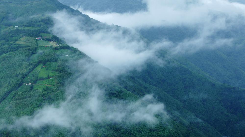 巨木群,與往拉拉山的路上-093