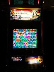 Video Slot Machine: Brazilian Beauty