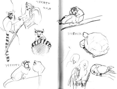 Chiba zoo01