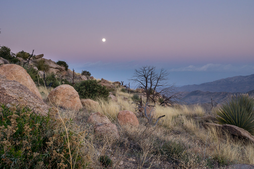 1403 Moon from Gibbon Mountain