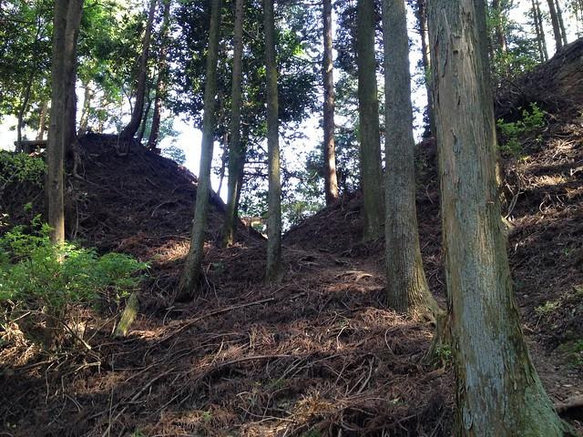 錫杖ヶ岳 加太コース 柚之木峠