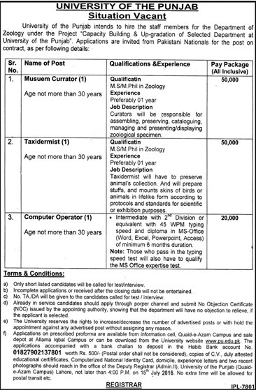 University of Punjab Career Opportunities