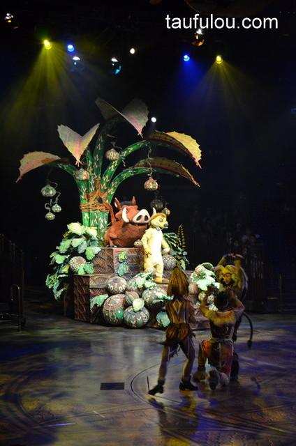HK Disneyland (70)