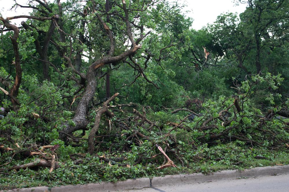 Green Oaks Mangled