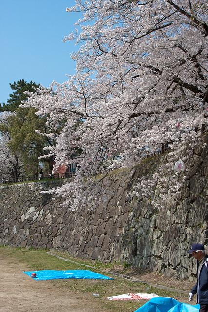2012-kyushu-161