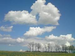 Un printemps en Haute-Loire, mai 2012