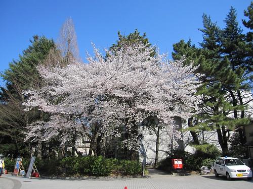 東大駒場キャンパス正門 by Poran111