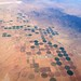 Desert farming