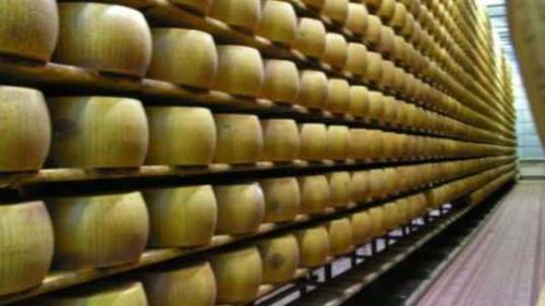 Parmigiano Reggiano Santa Rita