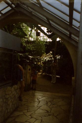 Budapest Zoo_0027