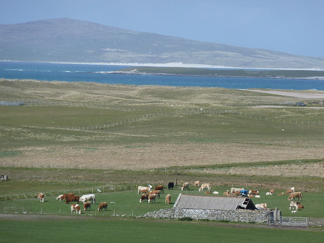 Hebridean View, North Uist