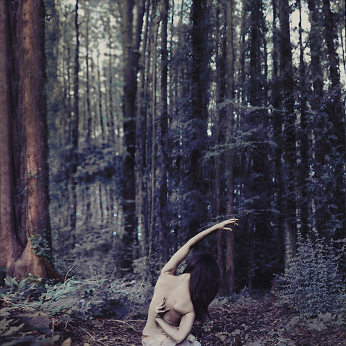 how to reach your potential by brookeshaden