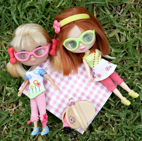 9/52 (12/52) - A Friendly Picnic by Among the Dolls