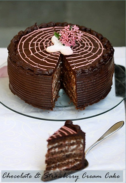 Chocolate-Strawberry-Cream-Cake-11
