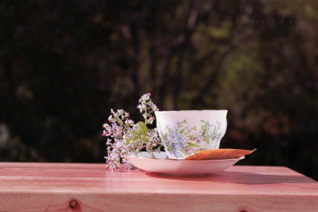 Amo las tazas de té