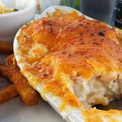 Dinner: Rotten au Gratin. Mmm.