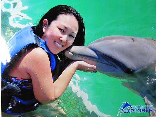 Dolphin Explore [KACHI♥]
