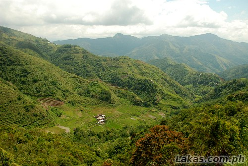 Kinga Rice Terraces in Abatan, Hungduan, Ifugao