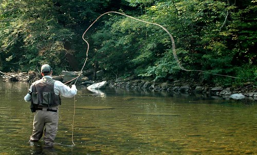 fly-fishing-for-web