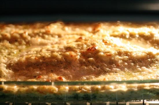 Lasagna broiler