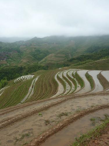 C-Guangxi-Dazhai-Descente (5)