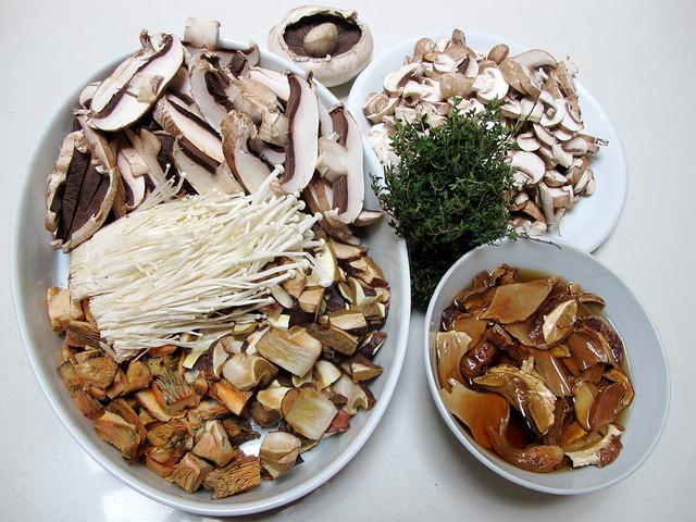 Mushroom bonanza