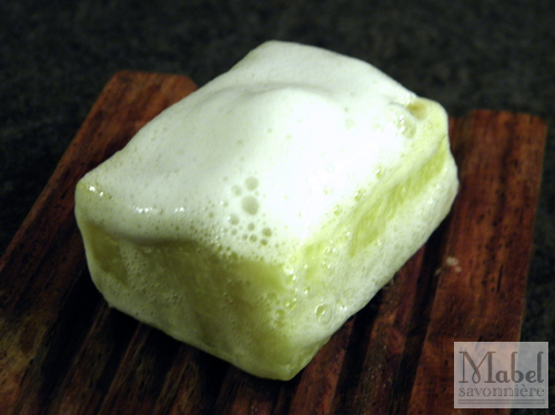 Bubble Test: Rosemary Shampoo Bar