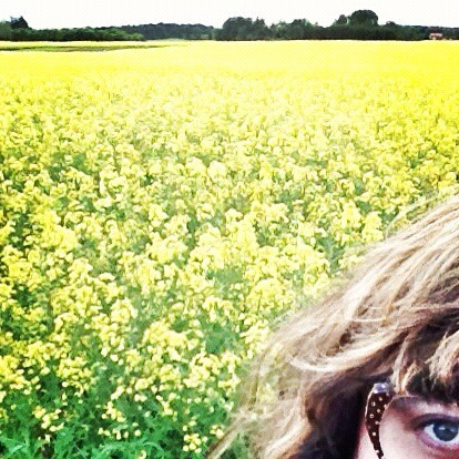 rapeseed field and i