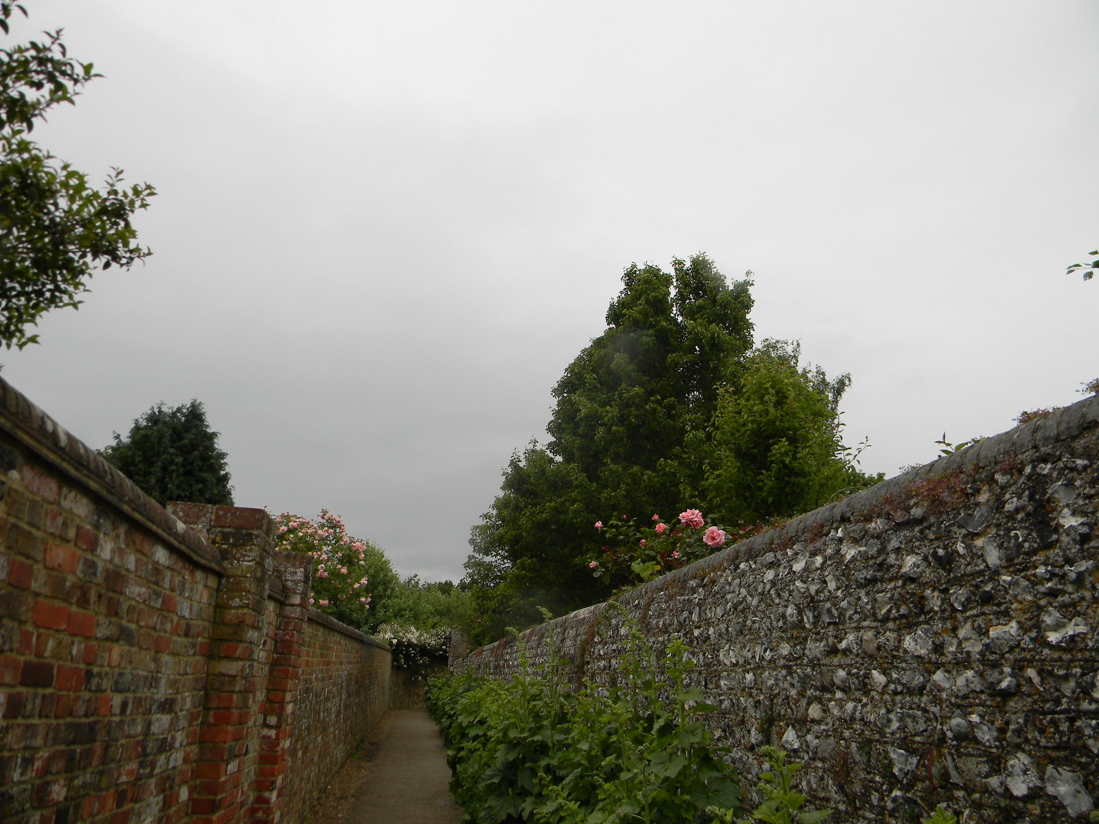 Walled path - Berwick church Lewes to Berwick