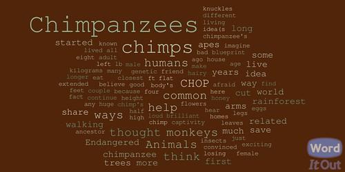 Chimp Essay Wordcloud